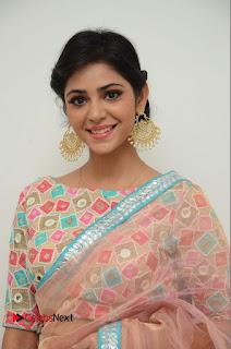 Actress Priyanka Bharadwaj Pictures in Saree at Mister 420 Press Meet  0002.JPG