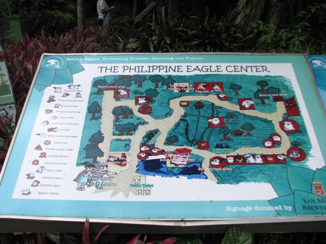 philippine eagle davao, davao tour, davao tours, around davao, davao city, davao city tourist attractions, what to do in davao, where to go in davao city, davao eagle