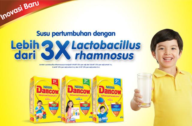 Bakteri Lactobacillus Susu Dancow
