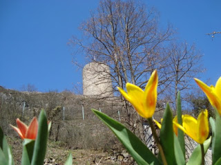 Schlossberg,  The Castle ruins in  Hohenfels, Bavaria, Germany