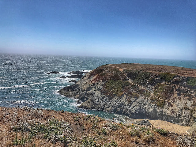 Bluffs at Bodega Bay trail