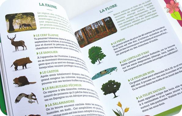 Les petits explorateurs : Châteaux de la Loire - Quelle histoire et Michelin