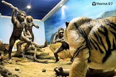 Museum Purba Sangiran, Museum Arkeologi Terlengkap di Asia