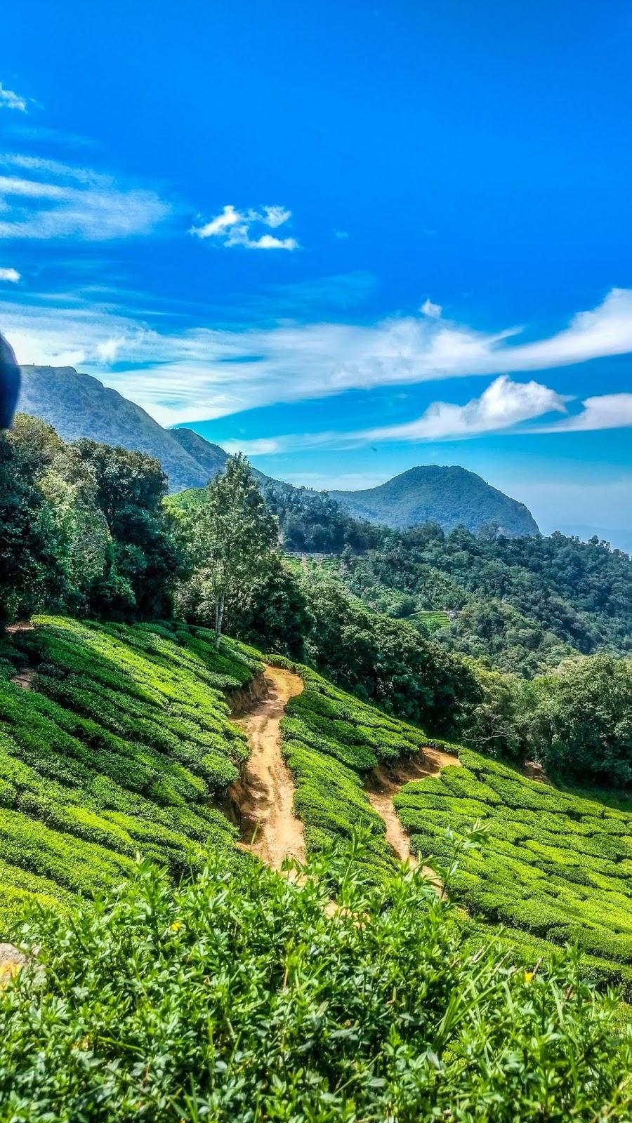 8 gambar pemandangan indah pedesaan