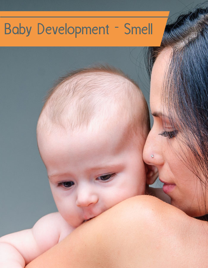 Baby Development - Smell