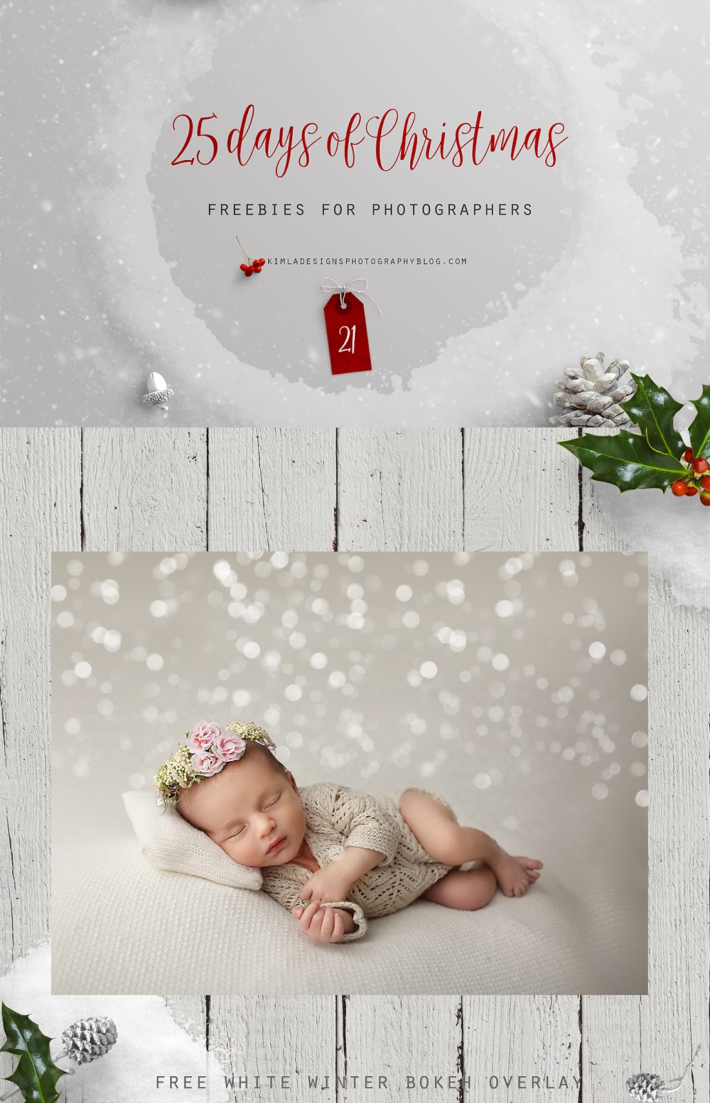 25 Days of Christmas Freebies for Photographers Day 21st