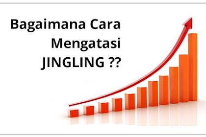 Tips dan Cara mengatasi Jingling (Auto Visitor) di Blog