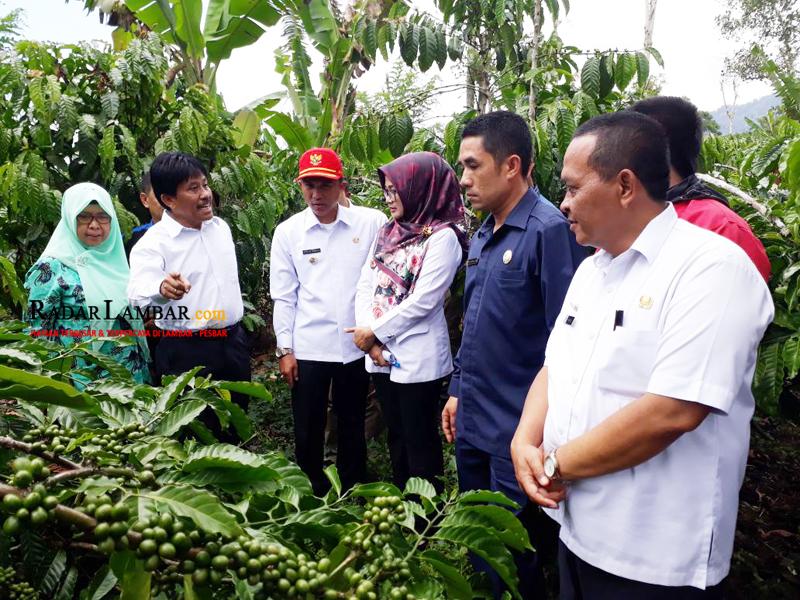 Parosil: Pembanguan Pedesaan Solusi Pengembangan Ekonomi Daerah