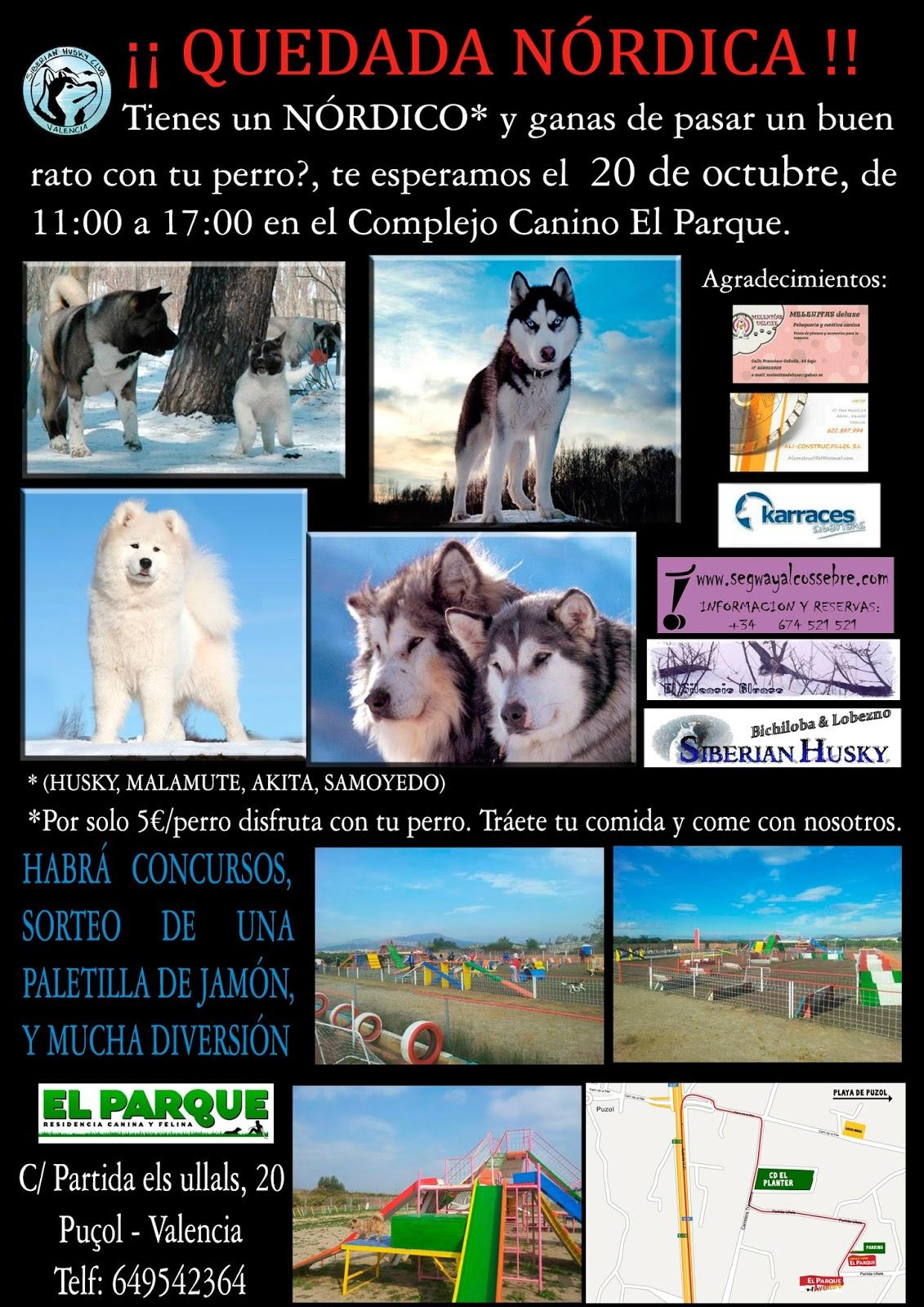 Foto Cartel Quedada Nordicos Siberian Husky Club Valencia