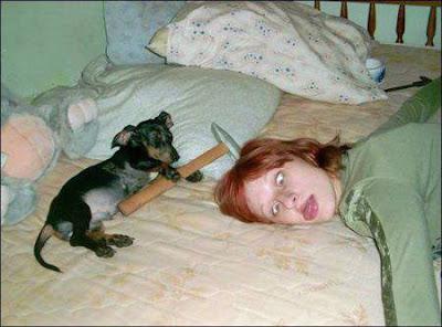 Lustige Bilder schlafende Menschen mit Hund