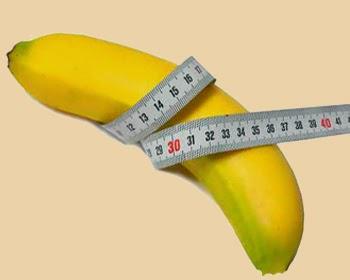 Член 15 сантиметров размер нормального пениса в длину
