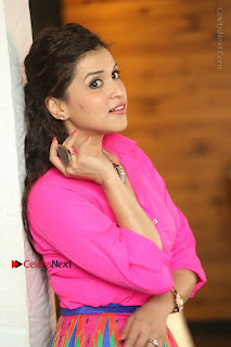 Actress Mannar Chopra in Pink Top and Blue Skirt at Rogue movie Interview  0153.JPG