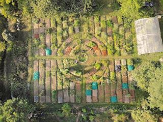jardin mandala