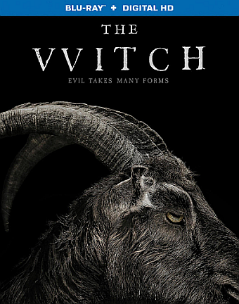 http://thehorrorclub.blogspot.com/2016/04/mays-blu-ray-of-month-witch-2016.html
