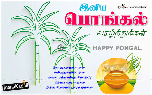 vector pot pongal wishes in tamil, tamil hd wallpaper for pongal, Tamil pongal information