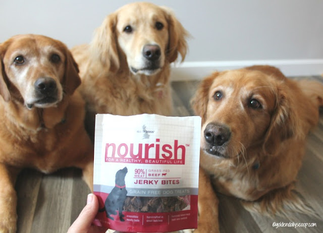 choosing a quality grain free  jerky treat for your dog