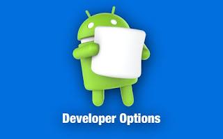 Fungsi dan Cara Mengaktifkan Developer Mode ( Mode Pengembang )