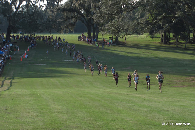 Leon County Schools' middle school cross country 2014