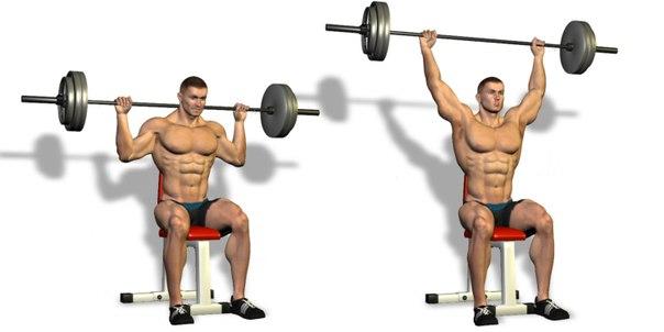Best Shoulder Workout - 5 Exercises Explained! - all ...