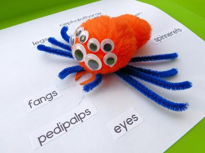https://www.teacherspayteachers.com/Product/Spider-STEAM-investigations-3380944