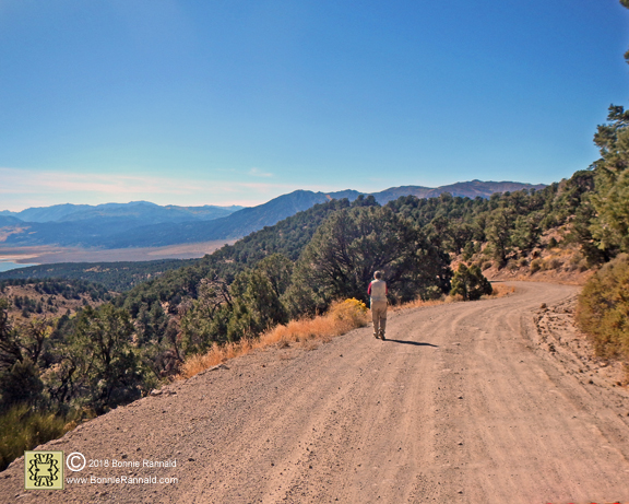 Mason Road to Chemung Mine and Masonic Ghost Town