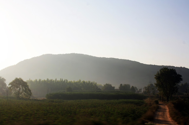 Highway, greenery, sunrise, view, gujarat, rajasthan