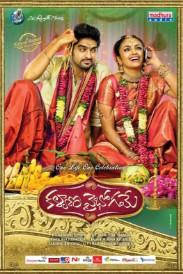 Kalyana Vaibhogame (2016) Telugu Movie DTHRip 700MB