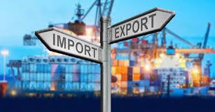 Formato Legalizacion de Importacion- Exportacion en Colombia