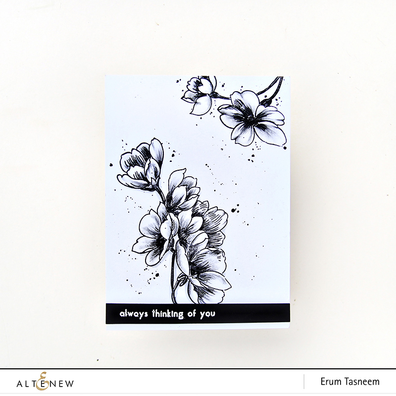 Altenew Pen Sketched Stamp Set | Erum Tasneem | @pr0digy0