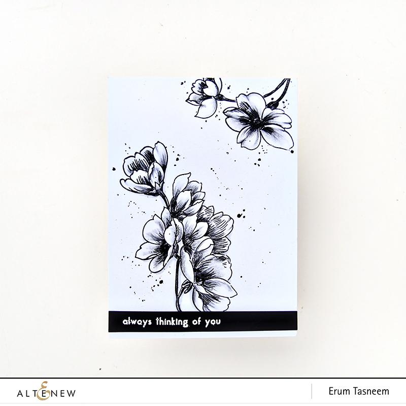 Altenew Pen Sketched Stamp Set | Erum Tasneem | @pr0digy0