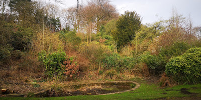 Photograph of a wide variety of different shrubs, covering a large slope behind a stagnant-looking artificial pond.
