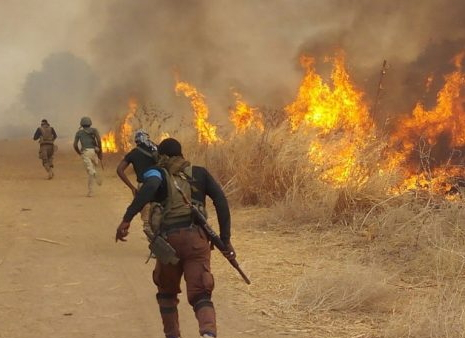 boko haram kills 5 soldiers