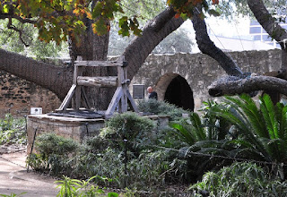 original well of the Alamo under a tree