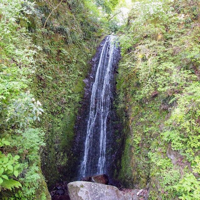 東海道 国道1号 蛙の滝
