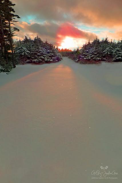 Pink Sky Winter Photo