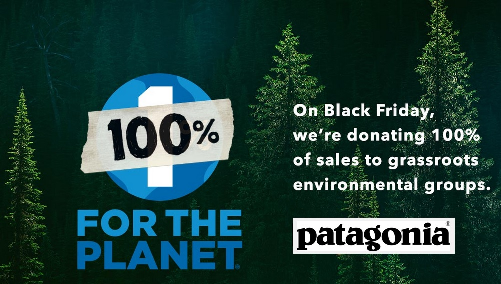 Image result for patagonia go green movement