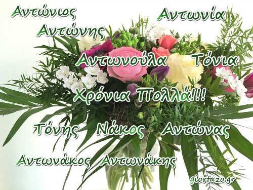 17 Ιανουαρίου  Σήμερα γιορτάζουν οι: Αντώνιος, Αντώνης giortazo