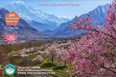 Hunza Blossom Tour (10 - 17 April, 2016)