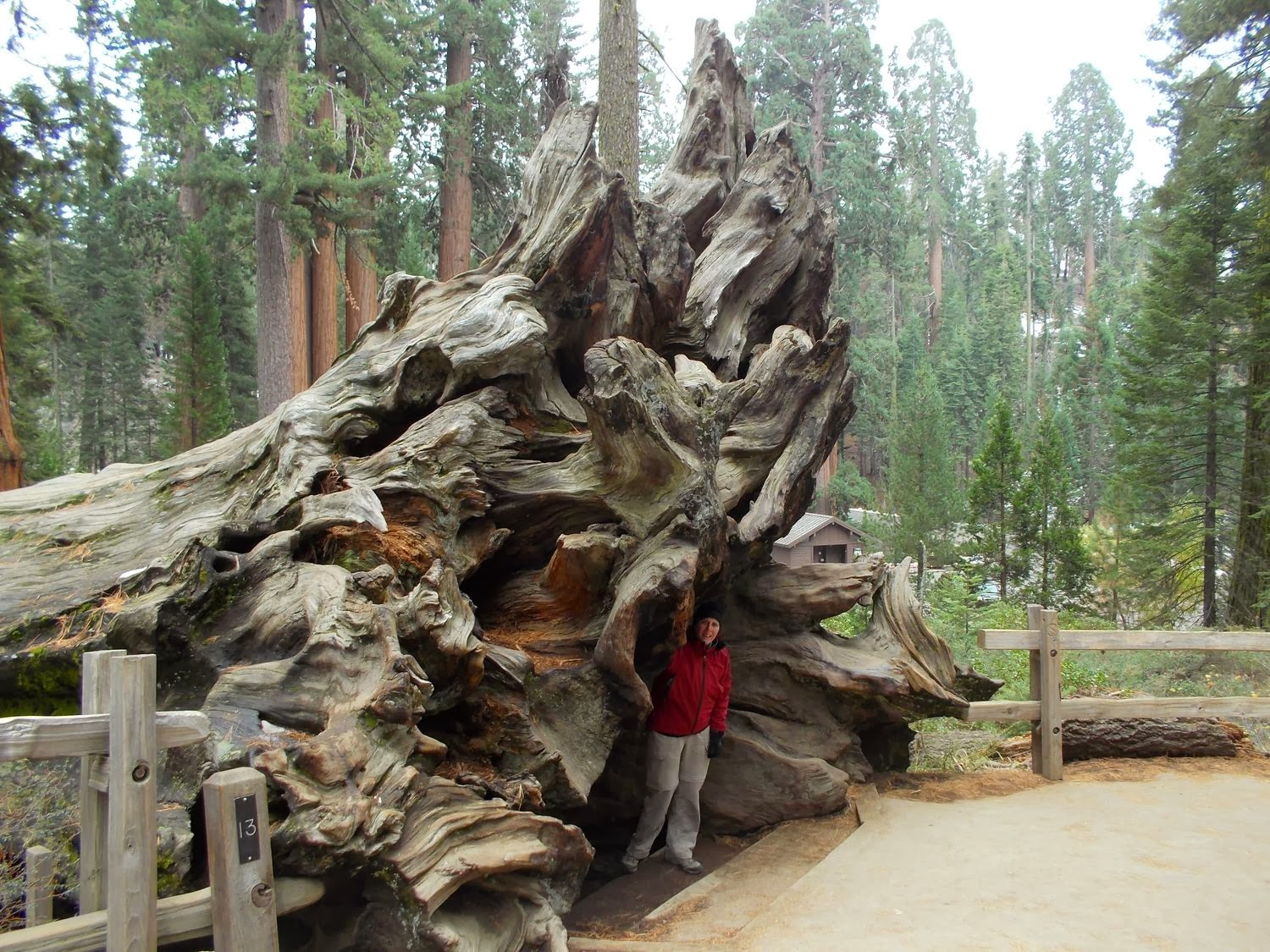 lodging park seki canyon there visit national sequoia kings california attraction camping getting in stevecalderaro cabins gettingthere