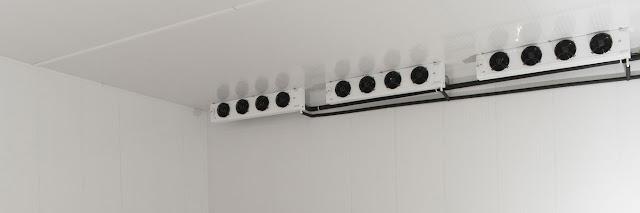 Sửa kho lạnh trữ thanh long