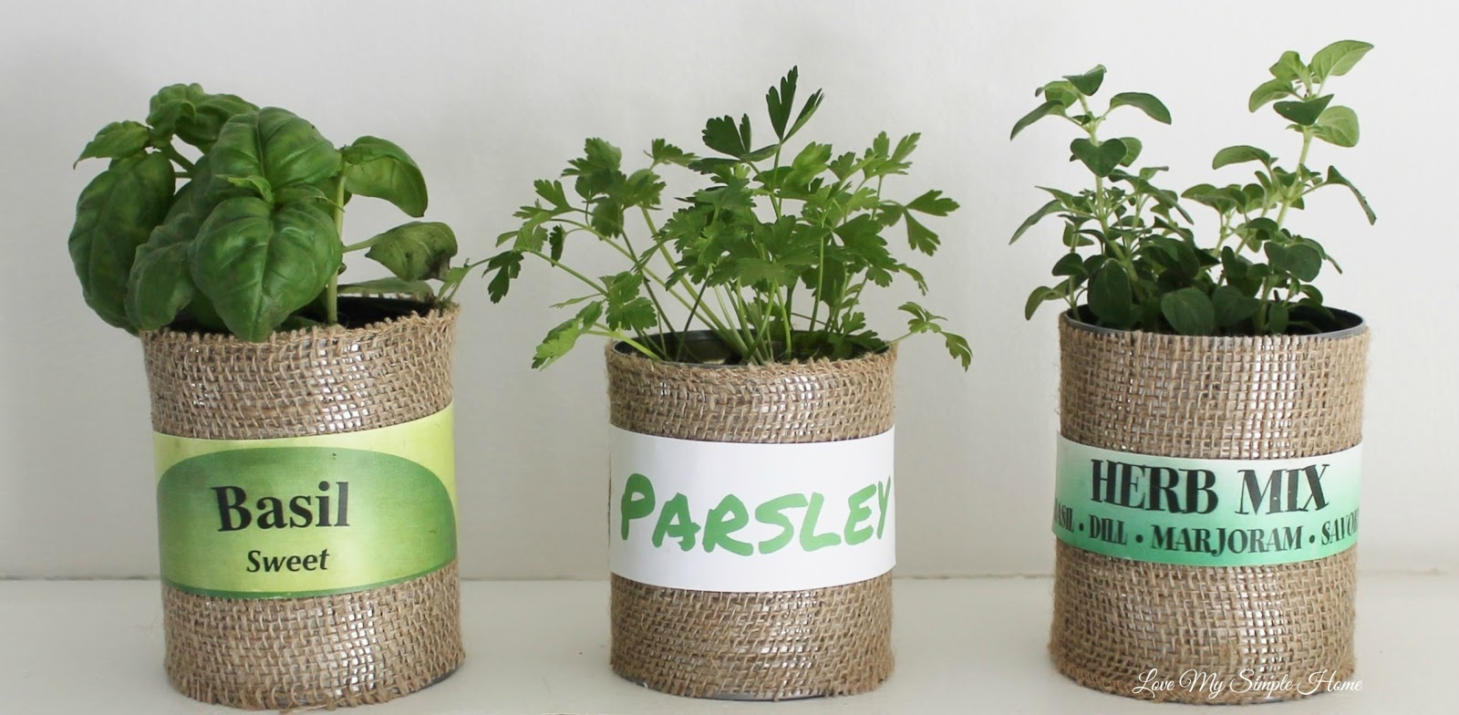 Simple Planters Diy Herb Planters In Up Cycled Cans Love My Simple Home