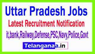 Latest Uttar Pradesh Government Job Notifications