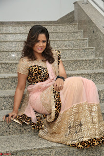 Shilpa Chakravarthy in Lovely Designer Pink Saree with Cat Print Pallu 058.JPG