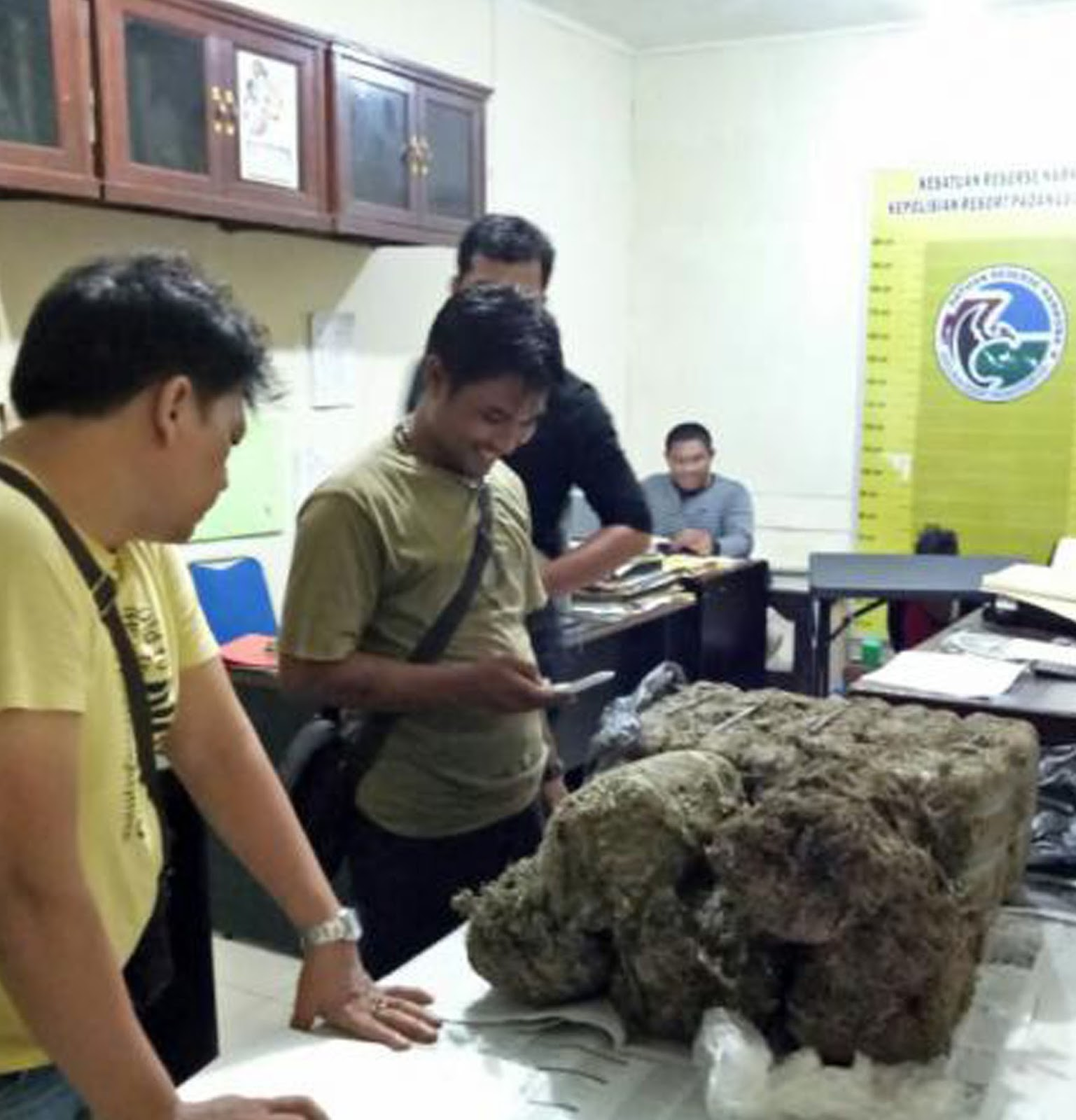 Petugas menunjukkan barang bukti daun ganja kering 25 kg yang dibawa tersangka.