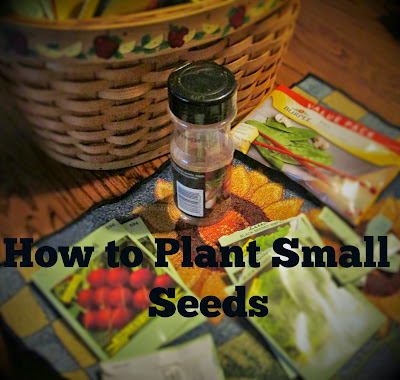 How to Plant Small Seeds