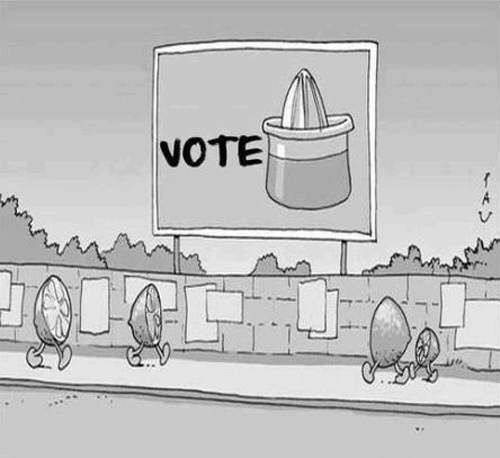 vote fun humor grafico