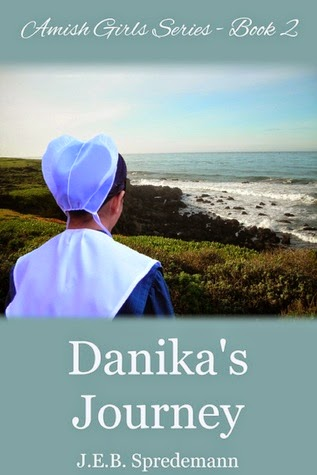 http://booksforchristiangirls.blogspot.com/2014/07/danikas-journey-by-jeb-spredemann-day-3.html