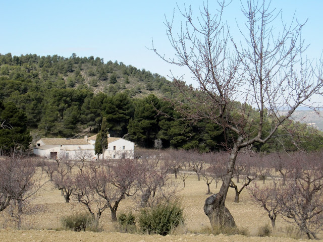 Mas del Carrascalet Carrascar de l'Arguenya