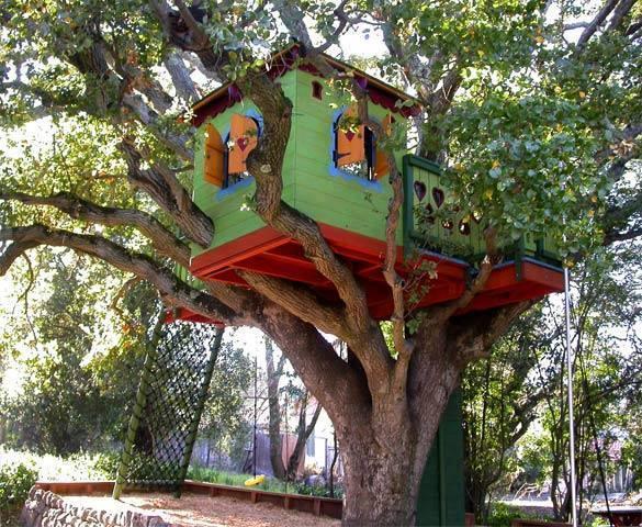 Houses on trees - unique
