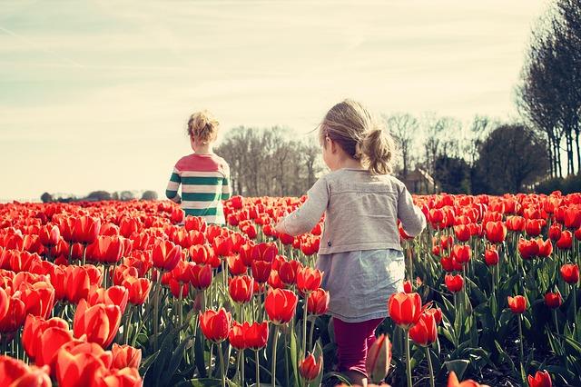 Zwei Mädchen in einem Feld Tulpen